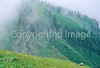 Glacier National Park, Montana - 37 - 72 dpi