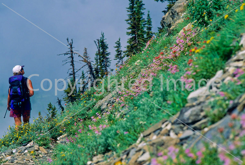 Hiker(s) in Glacier National Park, Montana - 86 - 72 dpi