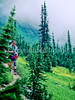 Hiker(s) in Glacier National Park, Montana - 27 - 72 dpi