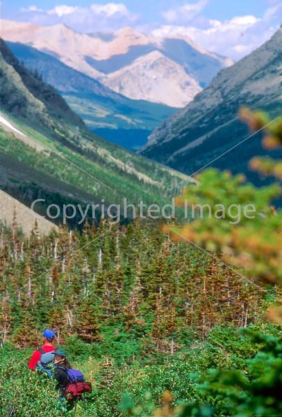 HI mt glacier 11 - ORps - jpeg - Hiker descending on Swiftcurrent Pass Trail in Glacier Nat