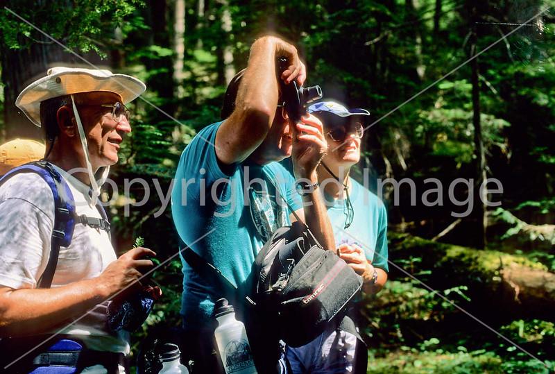 Hiker(s) in Glacier National Park, Montana - 59 - 72 dpi