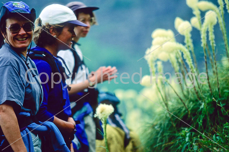 Hiker(s) in Glacier National Park, Montana - 48 - 72 dpi