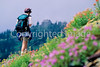 Hiker(s) in Glacier National Park, Montana - 92 - 72 dpi