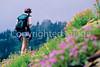 Hiker(s) in Glacier National Park, Montana - 92 - 72 dpi