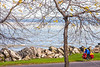 Touring cyclist on south shore of Lake Erie, near Ashtabula, Ohio-0232 - 72 ppi