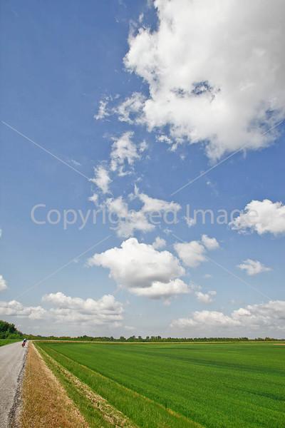 Bayou & fields riding north of Kaskaskia, Illinois, along Mississippi River-0156 - 72 ppi
