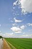Bayou & fields riding north of Kaskaskia, Illinois, along Mississippi River-0168 - 72 ppi