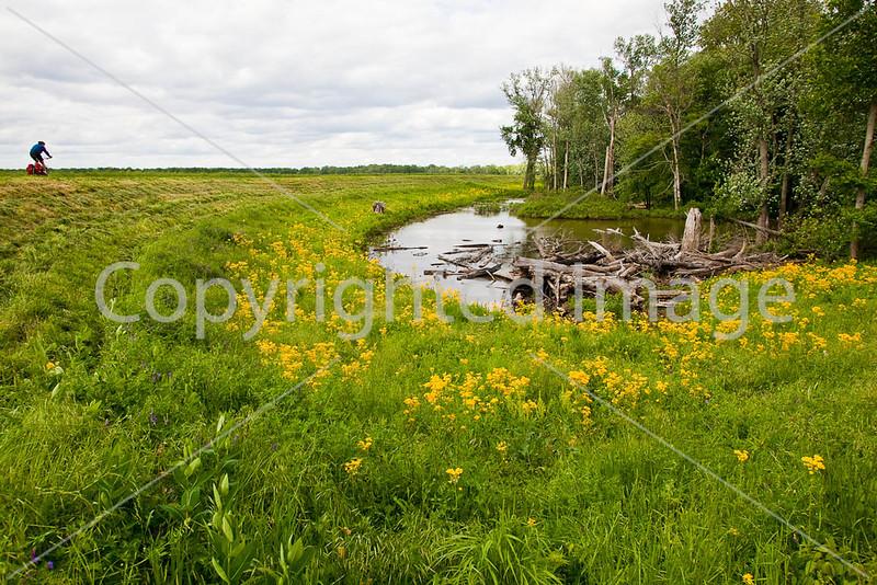 Biker off-road near Wabash Cannonball Bridge near St  Francisville, IL_MG_0199 - 72 ppi