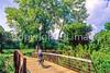 Biker on Sam Vadalabene Bike Trail between Alton & Pere Marquettte State Park, IL - 4 - 72 ppi