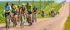 RAGBRAI 2014 - Day 1 - rider(s) between Rock Valley & Hull, Iowa - C1--0452 - 72 ppi-3
