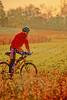 Mountain biker along the Kentucky River in Madison County, Kentucky - 72 dpi - -11