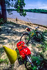 Touring mt  biker just off Katy Trail to MO River near Defiance, MO - 3 - 72 ppi