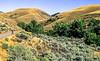 Biker on L&C Trail, on Idaho side of Lemhi Pass in Beaverhead Mts - 2-Edit - 72 ppi-2