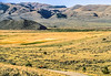Mountain biker in Montana near Camp Fortunate on Lewis & Clark Trail, on way to Lemhi Pass on ACA Trail - 16-Edit - 72 ppi