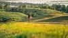 Lewis & Clark - Cyclist near Chamberlain, South Dakota, on Missouri River - 4-Edit - 72 ppi-2