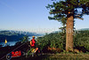 Tourer in Columbia Gorge east of Portland, Oregon - 1 - 72 ppi