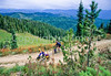 Touring cyclist(s) on Lolo Trail in Idaho's Bitterroot Mts; Forest Road 500 - 21 - 72 ppi
