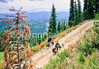 Touring cyclist(s) on Lolo Trail in Idaho's Bitterroot Mts; Forest Road 500 - 22 - 72 ppi