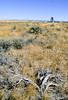 Cyclist at Little Bighorn Battlefield Nat  Monument in Montana - 9 - 72 ppi