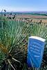 Little Bighorn Battlefield Nat  Monument, Montana - 14 - 72 ppi