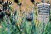 Little Bighorn Battlefield Nat  Monument, Montana - 18 - 72 ppi