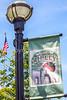 Downtown Ripley, TN - C3-0001 - 72 ppi