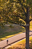 Vicksburg Nat'l Military Park, MS - D2-C4-0047 - 72 ppi-2