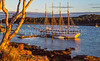 Maine - Acadia - Sojourn - D2-C2-0026 - 72 ppi-2