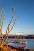 Maine - Acadia - Sojourn - D2-C2-0026 - 72 ppi