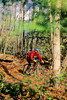 Mountain biker on approach to Bald Pate Mountain in Maine, near New Hampshire border & town of Naples - 72 dpi  - -5