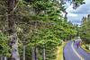 Maine - Acadia - Sojourn - D4-C1-0315 - 72 ppi