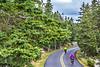 Maine - Acadia - Sojourn - D4-C1-0315 - 72 ppi-3