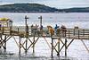 Maine - Acadia - Sojourn - D5-C1-0024 - 72 ppi