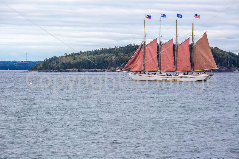 Maine - Acadia - Sojourn - D5-C1-0067 - 72 ppi