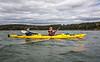 Maine - Acadia - Sojourn - D5-C2-0343 - 72 ppi