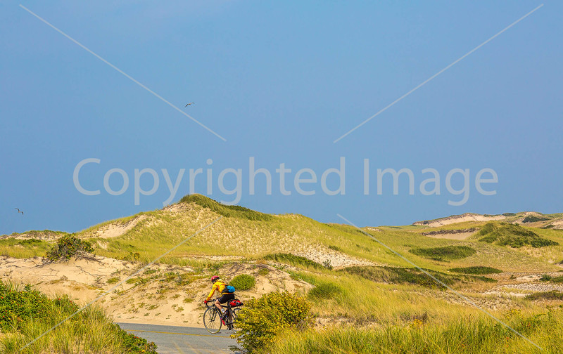 Biker near Race Point Beach in Cape Cod Nat'l Seashore, MA - C3-0152c - 72 ppi