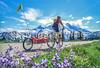 Cyclist in Mount Rainier Nat'l Park, Washington - 5-2-2 - 72 ppi