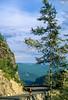 Cyclist in Mount Rainier Nat'l Park, Washington - 17-2 - 72 ppi