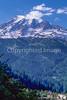 Cyclist in Mount Rainier Nat'l Park, Washington - 15-2 - 72 ppi