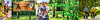 Natchez Trace - Composite - final #1 - 75% Quality