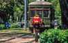 Cyclist & streetcar along St  Charles Avenue in New Orleans  - 4 - 72 ppi-2
