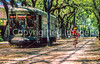Cyclist & streetcar along St  Charles Avenue in New Orleans  - 1-2 - 72 ppi