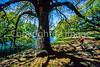 Cyclist in New Orleans' Audubon Park - 1 - 72 ppi