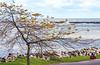 Touring cyclist on south shore of Lake Erie, near Ashtabula, Ohio-0206 - 72 ppi