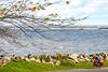 Touring cyclist on south shore of Lake Erie, near Ashtabula, Ohio- - 72 ppi