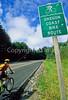 Tourer on Oregon Coast Bike Route on US 101 near Reedsport - 2 - 72 ppi