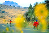 Cycle Oregon - recumbent - 105 - 72 ppi