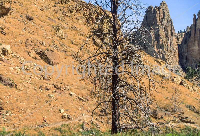 Mountain biker on trail at Smith Rock State Park, Oregon - 2 - 72 ppi