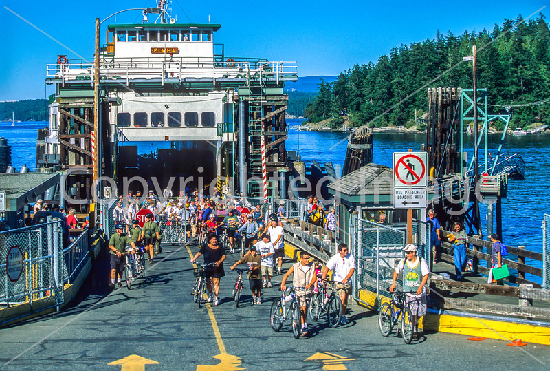 Cyclists leaving ferry at Friday Harbor in WA's San Juan Island - 4-2 - 72 ppi