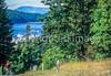Biker in San Juan Islands near Seattle, heading to Roche Harbor - 3-2 - 72 ppi